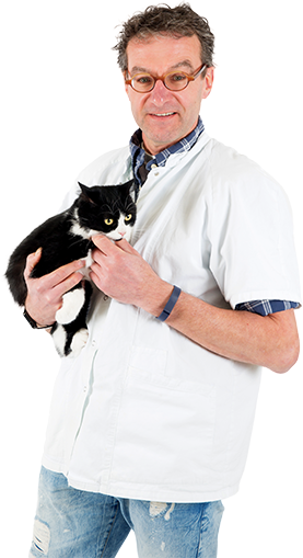 Image of a doctor with a cat